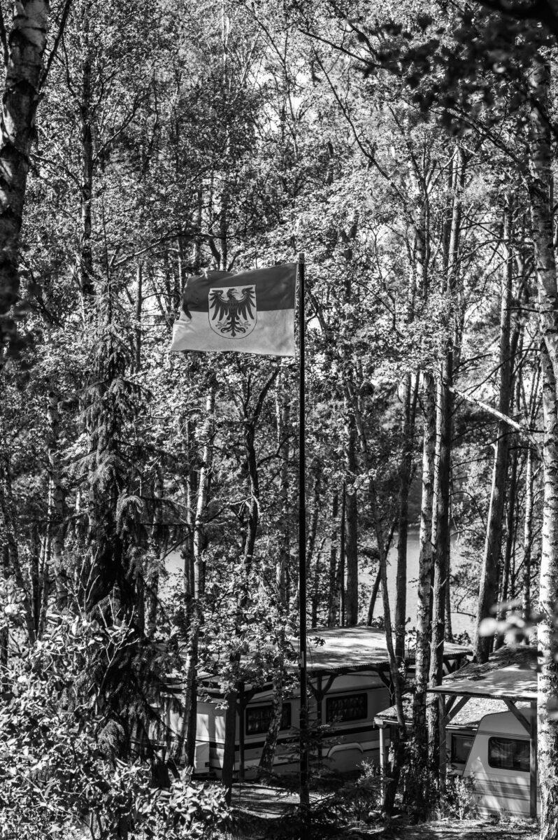Campingplatz am Springsee