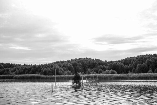 Fischreuse in Groß Schauen